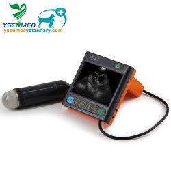 Secteur Mécanique numérique Instrument de diagnostic à ultrasons