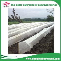 La couverture du sol Utiliser Net Telas rouleaux de tissu non tissé