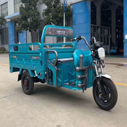 Bewegungsdreirädriges elektrisches Motorrad des Gang-1000W mit grossem Kabel