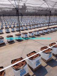 Contrôle des mauvaises herbes tissu /Weedmat /Limon clôture Weedbarrier avec haute UV /la stabilisation