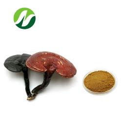 Haut standard 10 %-50 % Polysaccharides 10%-50% bêta glucan Ganoderma lucidum/le champignon Reishi Extract