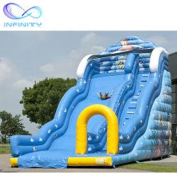 巨大で膨脹可能な水スライドの膨脹可能な波のスライド浜水城のスライド