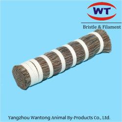 La prêle brosse sèche pour fabriquer de nouveaux produits en provenance de Chine marché
