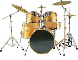 Proffessional 재즈 드럼