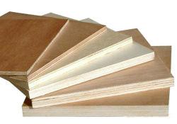 Compensato/compensato commerciale/compensato comune di legno di pino del compensato del fronte betulla/del compensato Produts/Okoume F/B