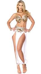 Halloween-reizvolles Wäsche-Kostüm-Maskottchen-erwachsenes Abendkleid-Partei-Zubehör-Karnevals-Harem-Nachtbauchtänzerin-Kostüm