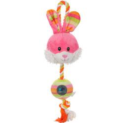 La resistenza stridente al morso Eggs il giocattolo dell'animale domestico del pollo del coniglio di serie con un'unità di sondaggio
