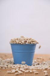 Qualitätsoptimaler geblichener Erdnuss-Kern von Linyi China