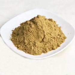 Gel de Aloe Vera en polvo liofilizado/Aloe Vera en polvo Freeze-Dried