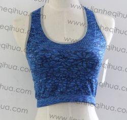 Fabrik-Großhandelsfrauen-Sport-Büstenhalter-Form-reizvolle Unterwäsche