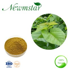 ISO. Certificação Kosher extrato vegetal puro Flavone Mulberry extrato de folhas, de folhas de Amoreira