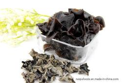 L'oreille de bois de champignons séchés champignons noir