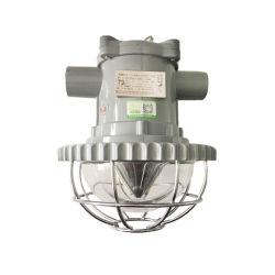 Dgs18 18W LED 플러드 빛 18W 폭발 방지 빛 Exdemb LED 도로 빛