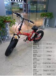 Electrica Superlicht, das elektrisches Fahrrad/elektrisches Fahrrad/Ebike faltet