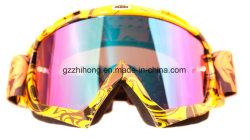 Il motociclo degli accessori di Motorycycle parte gli occhiali di protezione dei caschi di Bick