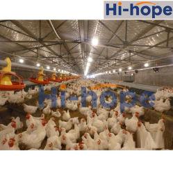 卵のネストの農業の機械装置の鶏装置の養鶏場
