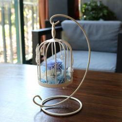 Flor eterna, conservados derivava Rose Flower na cúpula de vidro para o aniversário do Dia dos Namorados, Dia da Mãe, aniversário, compromisso, Dia do Agradecimento, Natal (I