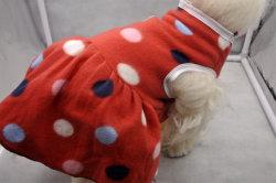 Auf Lager Multi Größen Frühling und Herbst Stil Haustiere Produkte (PCZW21052)