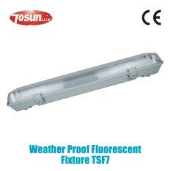 Prueba de intemperie sin soporte de montaje Montaje fluorescente