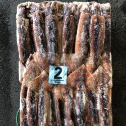 150-200 calamaro congelato all'ingrosso dell'Argentina Illex
