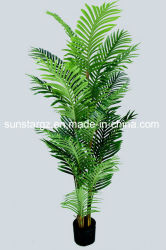 De plastic PE Kunstmatige Areca van de Installatie Palm van de Parel voor Decoratie (50504)