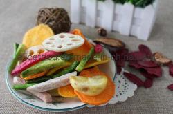 Il vuoto sano e naturale del CERT di Halal dello spuntino ha fritto le verdure secche delle verdure della miscela