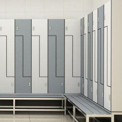 L'hôpital stratifié HPL de casiers de stockage compact pour la vente Vestiaire Banc public