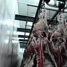 고기 공정 장치를 가진 도살장을%s 양 Slaughtering 장비