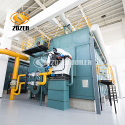 14MW Caldera Acuotubular de Agua Caliente de Gas con CE ASME para la Industria de Calefacción