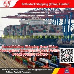 Trasporto di consolidamento dalla Cina/Guangzhou/Shenzhen a servizio del trasporto marittimo di Kobe/Giappone/Asia Pacific