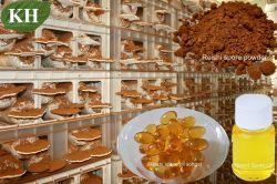 Co2 van uitstekende kwaliteit van Softgel van de Olie van de Spore Reishi