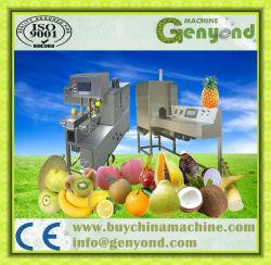 De automatische Machine van de Schil van het Fruit van het Roestvrij staal