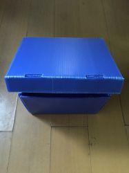 de Plastic Doos van het Polypropyleen pp van 3mm 5mm/de Blauwe Doos van Correx Coroplast Corflute
