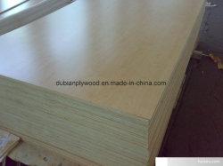 Birch contraplacado com pintura UV para uso de mobiliário