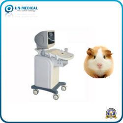 L'EFP B l'échographie en mode numérique portable de la machine pour Animal vétérinaire