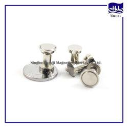 Magnete componente del neodimio di Pin del cilindro di figura speciale della colonna