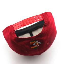 Le coton à plat le projet de loi Cap Snapback de broderie Hat