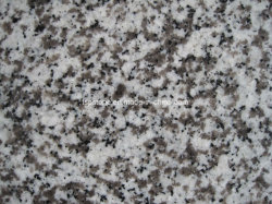 Chinese Guangdong White Granite G439 Graniet Flooring
