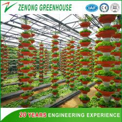 توريد المصانع نظام هيدروكولوجي عالي التقنية الزراعة زراعة مواد الدفيئة
