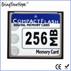 100X kompakte Blitz 256MB CF codierte Karte (CF 256MB)