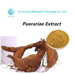 自然なPuerariaeのエキスのPuerarin 98% Kudzuのルートエキス