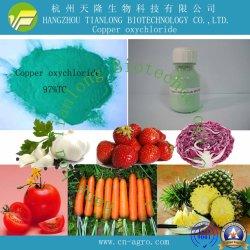 L'oxychlorure de cuivre (97%TC, 50%WP, 85%WP, 300SC)-fongicide