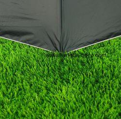 Distribuidores de la alfombra de césped artificial para la recreación