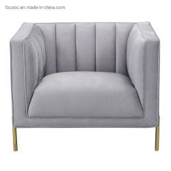 Hauptmöbel-Wohnzimmer-Sofa-Edelstahl Morden Sofa-gesetzter materieller Oberflächensamt-passen internes Auffüllen-Schwamm-Sofa-Bein Rahmen T an