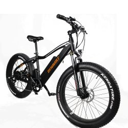2020 Best-Selling Cycle électrique de qualité supérieure avec fourche à suspension