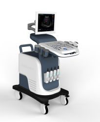 4D 이미징 기능이 있는 Full Digital Ultrasonic Diagnostic System 트롤리 컬러 도플러 초음파 스캐너 Xf7500(OEM, ODM
