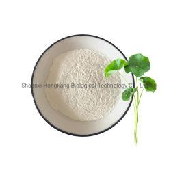 식물 추출물 허브 추출물 화장품 성분 고투 콜라 아시아산 Centella Asiatica Extract Triterpenoid Glycobides Powder(트리펜노이드 추출물)