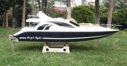 RC Yacht gaz -lueur pourpre Bao Lan (PL13326GW)