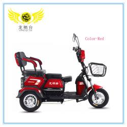 3 Roue tricycle motorisé adultes pour le vendre dans les Philippines Electric Motorcycle Scooter électrique Tricycles électriques