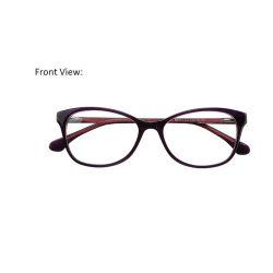 2019 het Nieuwe ModelFrame van het Schouwspel van het Glas van het Oog van de Glazen van het Frame van de Acetaat Eyewear Uitstekende Optische Unieke met de Scharnier van de Lente